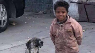 تعرف على قصة الطفل سيد ماهر الرحيم بتربية الكلب في الشارع