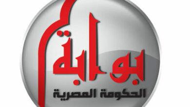 Photo of التسجيل في بوابة الحكومة المصرية وما هي أهم الخدمات المقدمة للمواطنين
