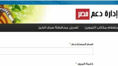 Photo of موقع دعم مصر إضافة مواليد 2021 على بطاقات التموين tamwin.com