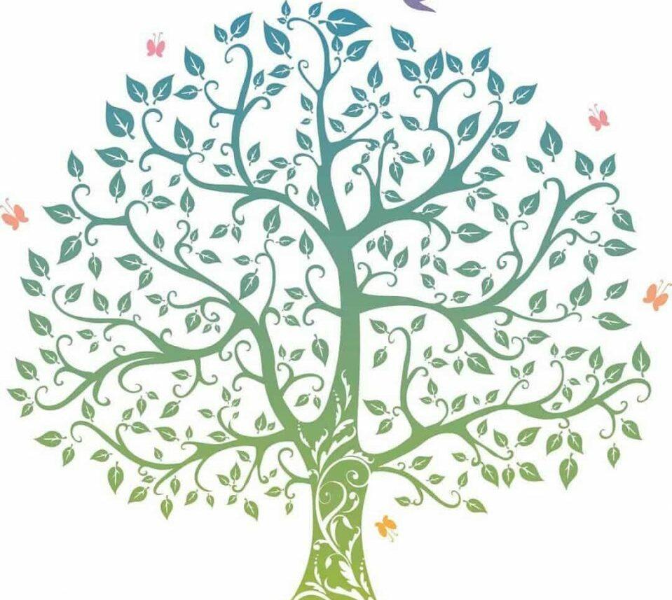 كيفية استخراج شجرة العائلة من دار الوثائق بالرقم القومي