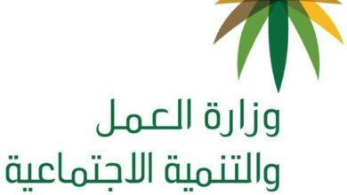 طريقة التسجيل في نطاقات وزارة العمل nitaqat.mlsd.gov.sa