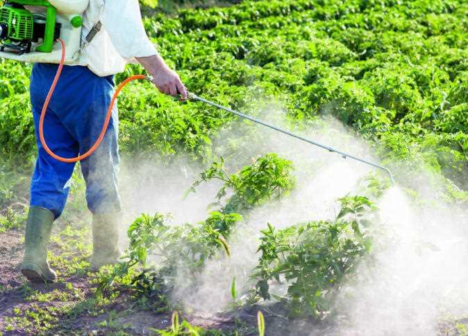 كيف تحصل على صلاحية تجارة المبيدات في مصر؟