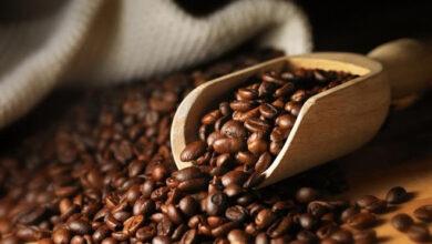 تجربتي مع القهوة للشعر