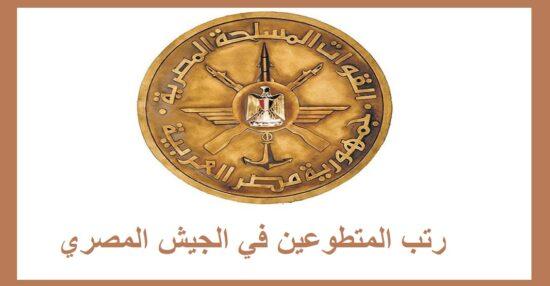 رتب المتطوعين في الجيش المصري