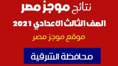 Photo of نتيجة الاعدادية محافظة الشرقية بالاسم فقط 2021 البوابة الإلكترونية لمحافظة الشرقية