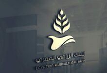 Photo of قروض بنك التنمية والائتمان الزراعي للشباب 2021 وأهم المستندات المطلوبة
