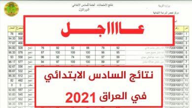 نتائج السادس الابتدائي 2021 عبر موقع وزارة التربية والتعليم العراقية epedu.gov.iq