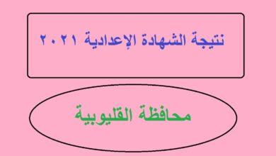 Photo of نتيجة الشهادة الإعدادية بالاسم محافظة القليوبية برقم الجلوس qalyoubia moe gov eg البوابة الالكترونية