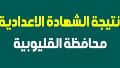 Photo of نتيجة الصف الثالث الاعدادي برقم الجلوس 2021 محافظة القليوبية رابط نتيجة الاعدادية الترم الثاني