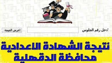 Photo of البوابة الإلكترونية لمحافظة الدقهلية 2021 لينك نتيجة الشهادة الإعدادية بالاسم الترم الثاني