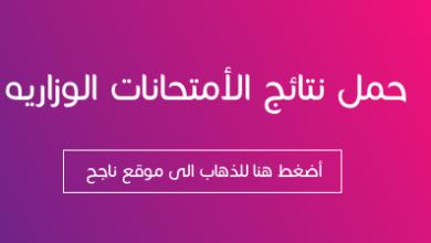 Photo of موقع وزارة التربية العراقية نتائج السادس الابتدائي 2021 moedu.gov.iq