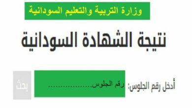 Photo of معرفة نتيجة الشهادة السودانية بإدخال رقم الجلوس 2021 الخرطوم والجزيرة ودافور