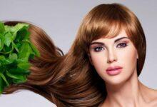 Photo of هل يمكن دهن الشعر بعد البروتين .. تعرف على صبغات الشعر المناسبة بعد البروتين