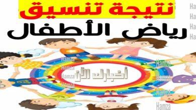 Photo of نتيجة تنسيق رياض الأطفال بالرقم القومي 2022 موقع وزارة التربية والتعليم خدمات ولي الامر