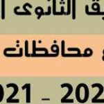 نتيجة تنسيق الثانوية العامة 2021/2022 محافظة القاهرة وكيفية التقديم الكترونيا عبر الانترنت
