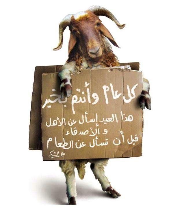 عيد الأضحى 9. مبارك - موجز مصر