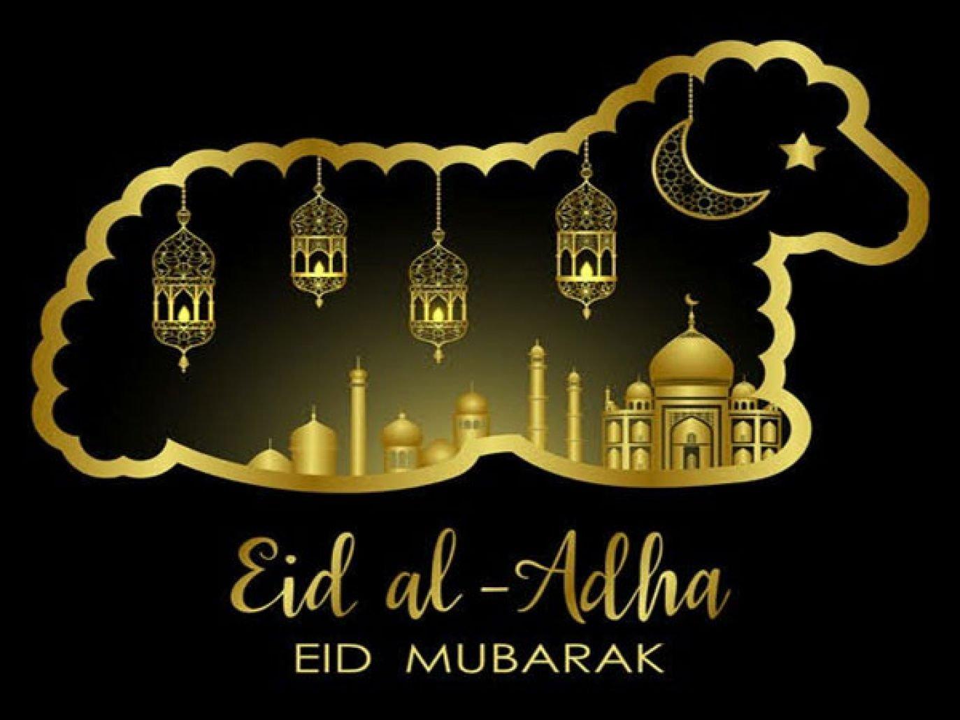 عيد الأضحى 5 مبارك - موجز مصر