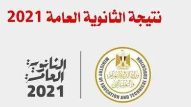 Photo of نسب القبول في الجامعات المصرية للعام الدراسي الجديد 2021/2022 تنسيق المرحلة الأولى
