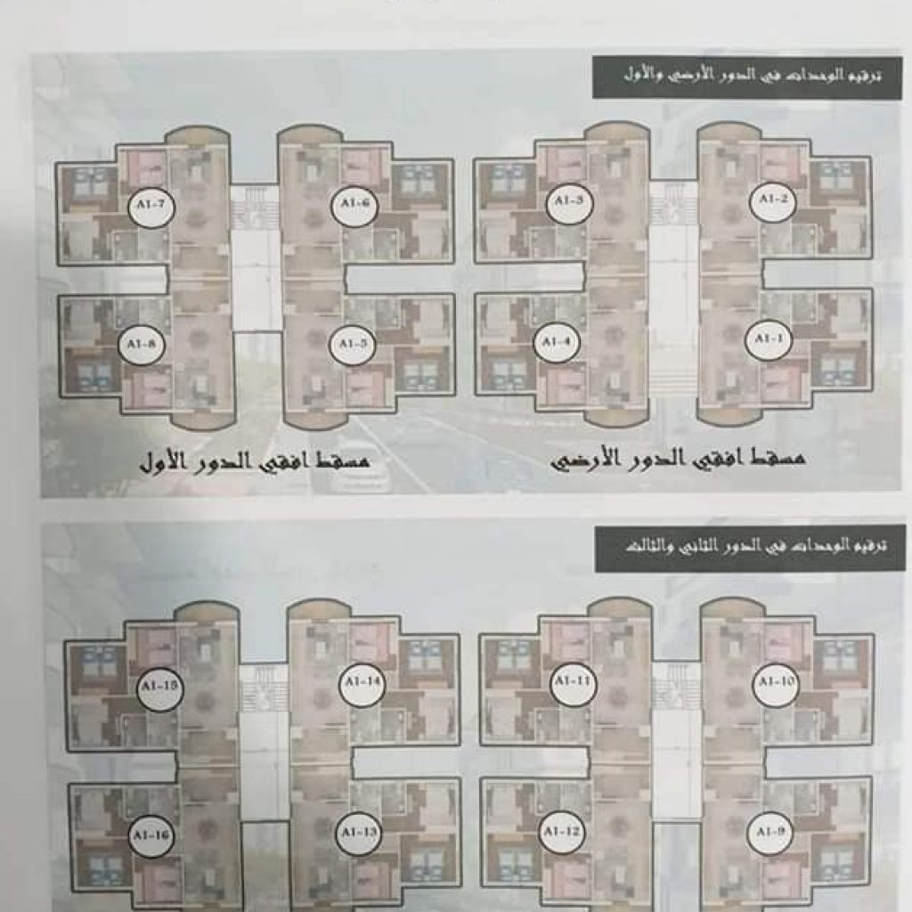 20 1024x1024 1 - موجز مصر